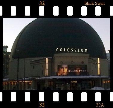 Black-Swan-Colosseum.jpg